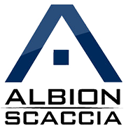 Albion Scaccia Enables Constant Access to Business Data
